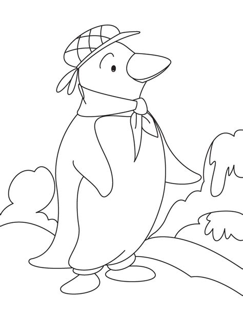 free coloring pages of puffin