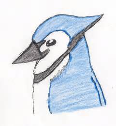 Blue Sketch blue jay drawing
