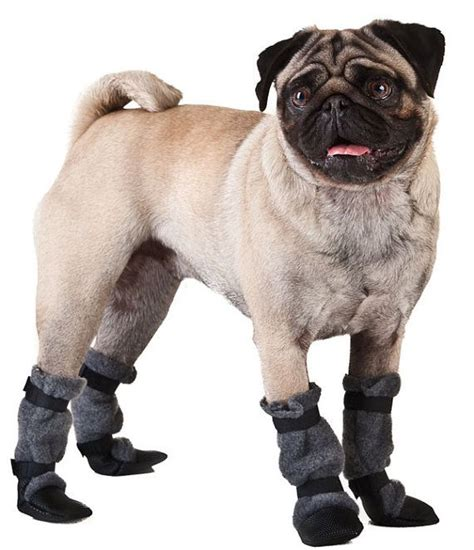 pug boots for dogs pug booties