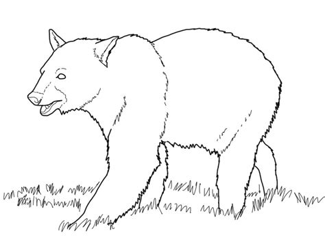 coloring pages bears free printable coloring pages for