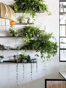 interior garden plants how to decorate your interior with green indoor plants and