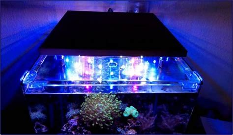 led meerwasser beleuchtung led aquarium beleuchtung meerwasser selber bauen