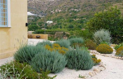 plantas para jardin mediterraneo jard 237 n mediterr 225 neo claves para aplicarlo en casa el