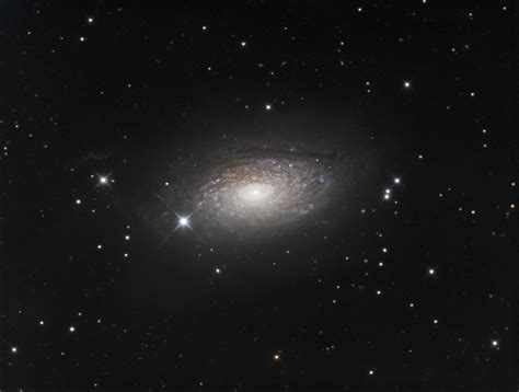 sunflower galaxy the sunflower galaxy m63 astronomy magazine