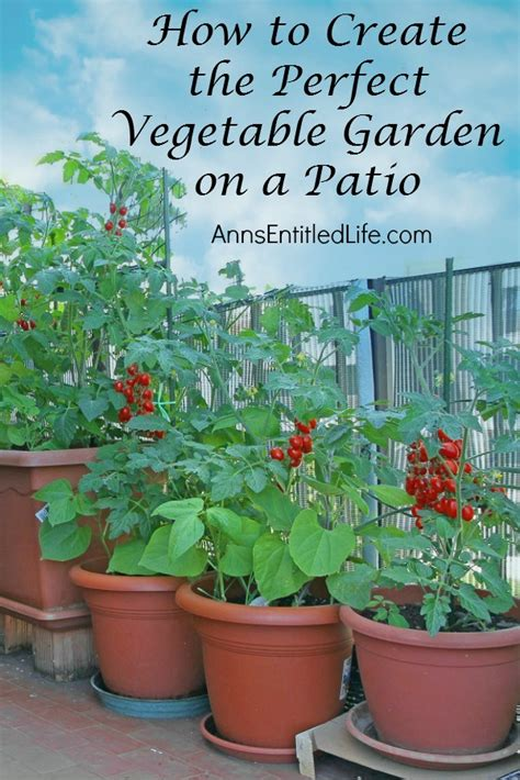 Create A Vegetable Garden On A Patio
