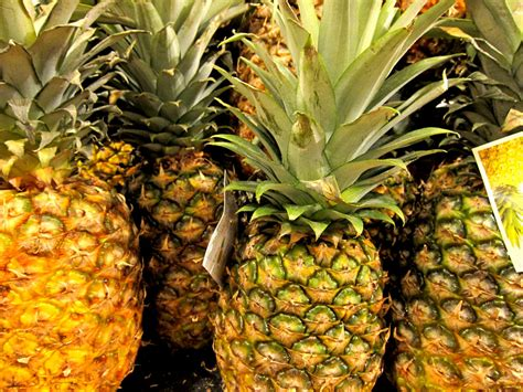 tropical fruits      puerto rico