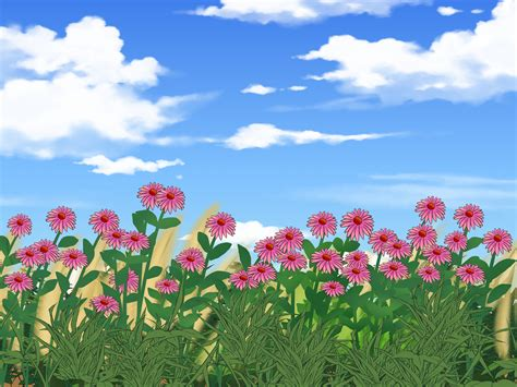 how to a prairie how to restore a prairie 8 steps with pictures wikihow