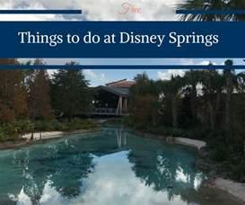 Orlando Floor And Decor free things to do at disney springs happy family blog