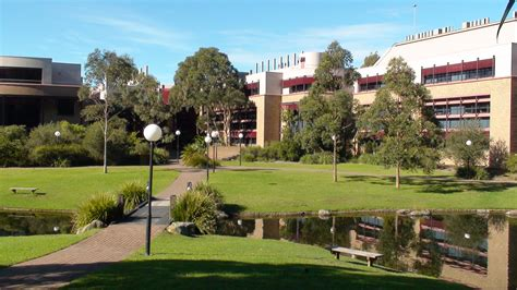 Sydney Business School Of Wollongong Mba Fees by International Business Of Wollongong