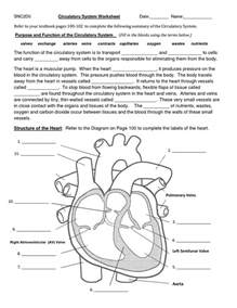 17 best ideas about circulatory system on pinterest