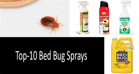 bed bug sprays that work top 10 bed bug sprays fast blood sucking insect killers