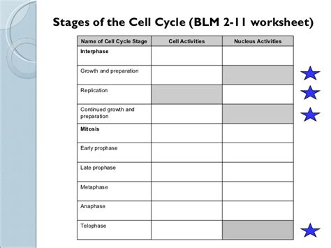 The Cell Cycle Worksheet by Sci 9 Lesson 2 Feb 23 Ch 5 1 Mitosis