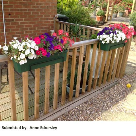 Balcony Trough Planter by Balcony Trough Planter 60cm On Sale Fast Delivery