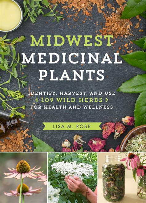 nature medicine essays on wildness and wellness books midwest medicinal plants identify harvest and