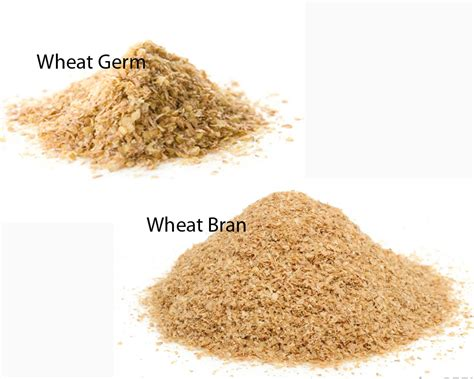 whole grains vs wheat wheat germ vs wheat bran thosefoods