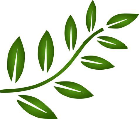 gambar vektor gratis cabang daun desain elemen gambar gratis di pixabay 309513