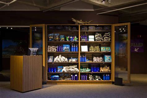 gift shop design layout retired sketchup blog sharks rays and sketchup at the