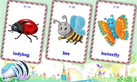 printable insect flash cards insects flashcards for kids android apps on google play