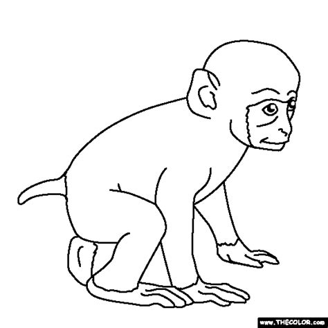 baby gorilla coloring page baby gorilla coloring pages