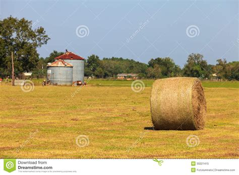 how free hay farm and 28 images farm a hay field with