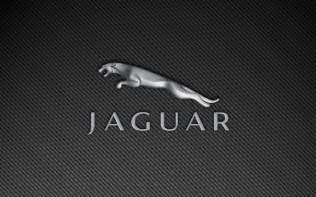 Jaguar Logo Jaguar Logo Jaguar Car Symbol And History