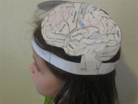 brain hat template homeschool in nyc sunday science brain hat