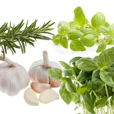 Sho Olive Herbal tuscan herb olive anacortes vinegar bar shop