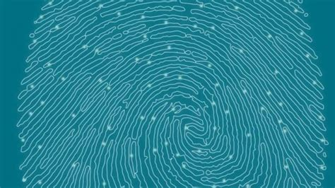 Where Can I Get Fingerprinted For A Background Check Windows Phone Devices May Finally Get Fingerprint Scanning Technology Mspoweruser