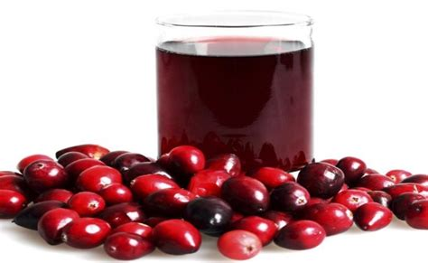 can dogs cranberry juice is yogurt an excellent remedy for yeast infections yeast infection tips
