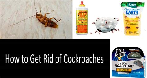 how to get rid of cockroaches in kitchen cabinets how to get rid of roaches in my kitchen