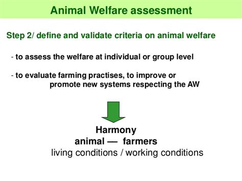 8 Ways To Support Animal Welfare by Sponsor Day On Animal Feeding Animal Welfare Definition
