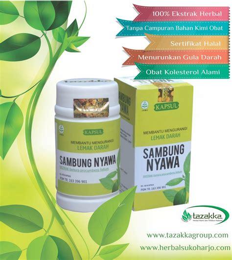 penyakit kolesterol  obat herbal  ampuh