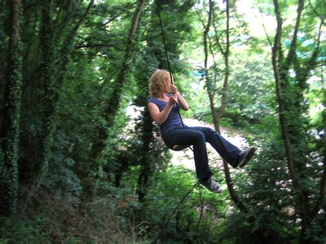 rope swing rope swing bristol united kingdom uk