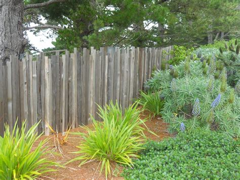 backyard fence ideas pictures backyard fencing ideas landscaping network
