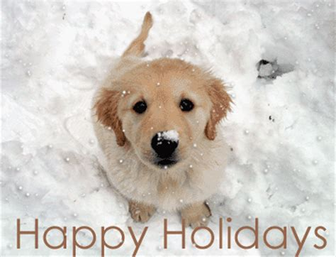 woof gif dog puppy happyholidays discover share gifs