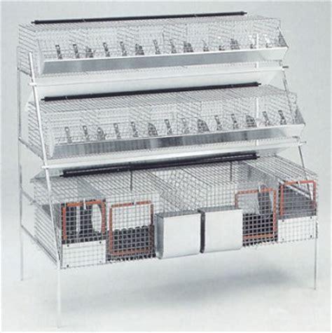 gabbie da ingrasso per conigli gabbia mista conigli 2 fattrici per conigli conigliera