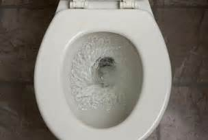 toilette flush australian toilets don t flush backwards because of the