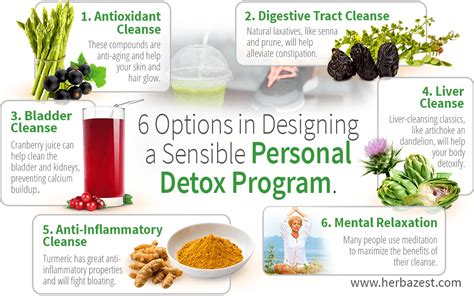 Best Detox Cleanse Programs by Archives Mediagetaddict