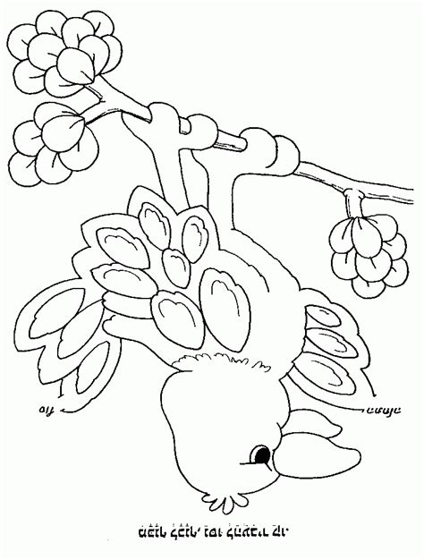 liger coloring pages coloring home