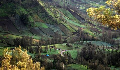 top tourist attractions  east java tourfrombali