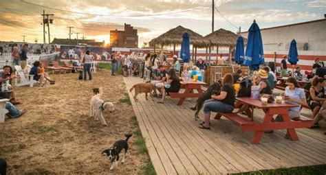 top dog bar nj 25 dog friendly nj restaurants funnewjersey magazine