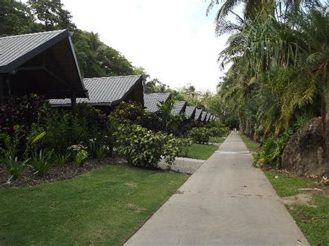 hamilton island bungalow palm bungalows picture of palm bungalows hamilton