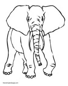 elephant ear coloring page collections