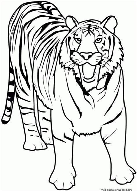 printable animal tiger africa coloring pages kidsfree printable coloring pages kids