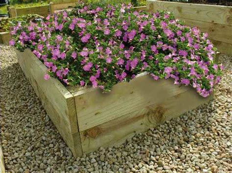 raised flower bed kits timber raised flower bed kits 14in high