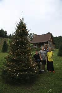 boyd mountain christmas tree farm smoky mountains north