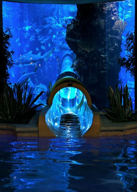 three indoor pool considerations for next your custom 17 best images about indoor aquariums on pinterest