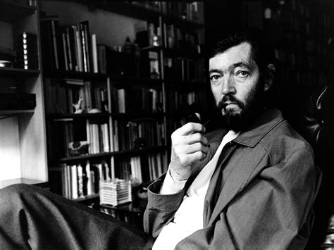 julio cortazar biography in spanish julio cortazar biography childhood life achievements