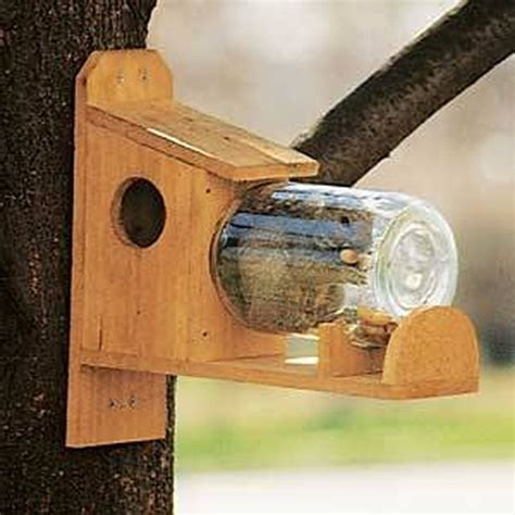 how to build a squirrel feeder jar cuteness
