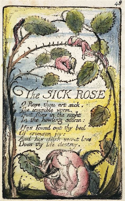 theme sick rose william blake file songs of innocence and of experience copy l object 48